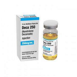 NapsGear Review DECA 250